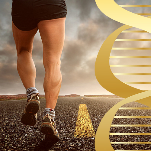 Тренируйте свой метаболизм